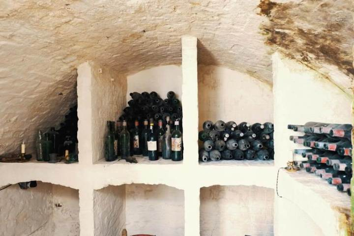 wine cellar filled with dusty bottles of wine