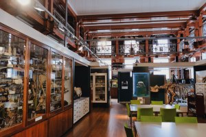 overview photo of the space of the Grant Museum of Zoology one of the must-visit quirky museums in London