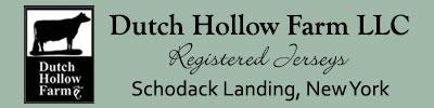 dutchhollow.usjerseyjournal.com Logo