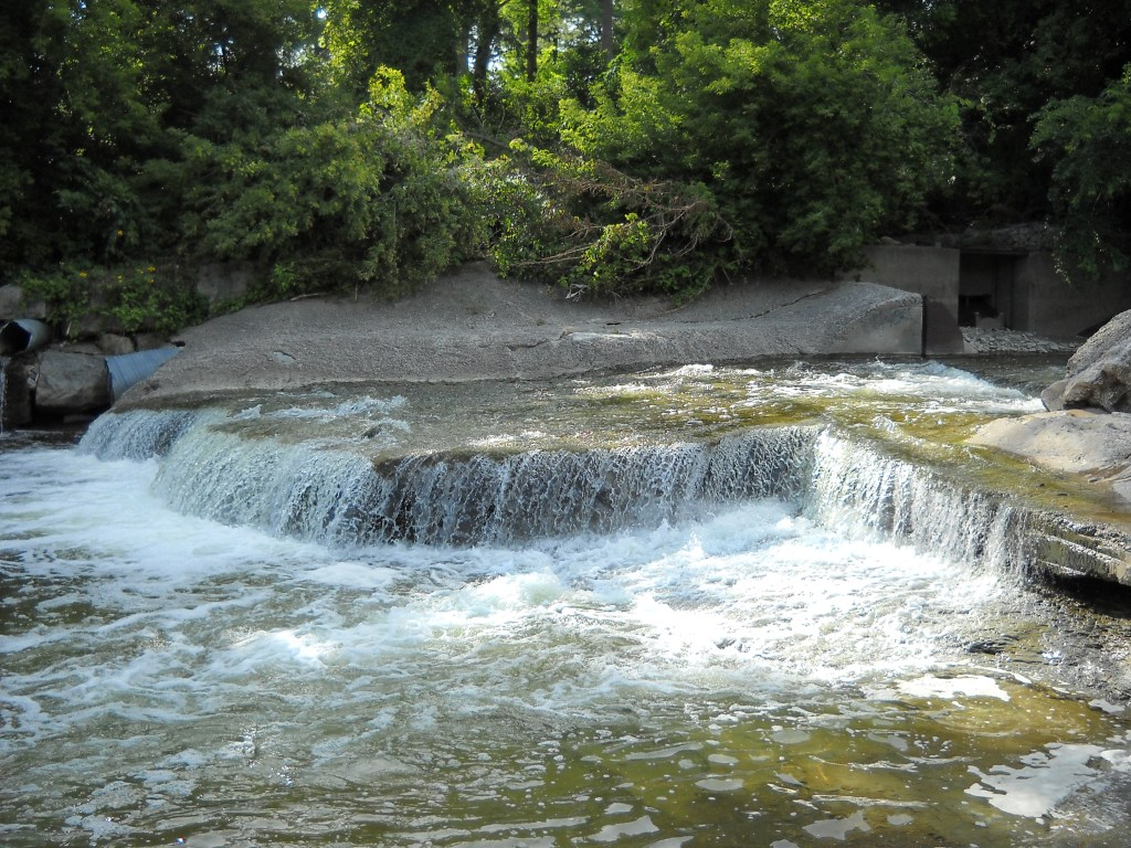 A photo of the Etobicoke Creek Waterfall, by Wikimedia Commons user, Rev Edward Brain. An illustration of a plentiful stream of water with greenery on the bank to symbolize a plentiful stream of inspiration.