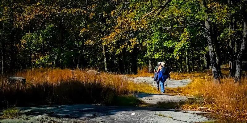 herfstwandeling wandelen in nederland, op de veluwe of in de achterhoek