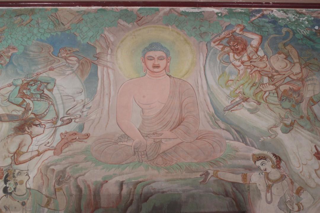 arbre eveil bouddha