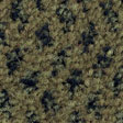 Olive-00242-(112px)