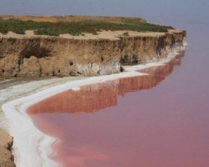 розовое озеро на Азовском море