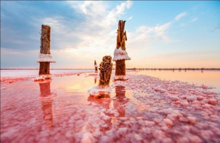 Два моря: целебное розовое озеро на Херсонщине