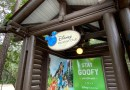 How Can I Afford Disney Vacation Club?