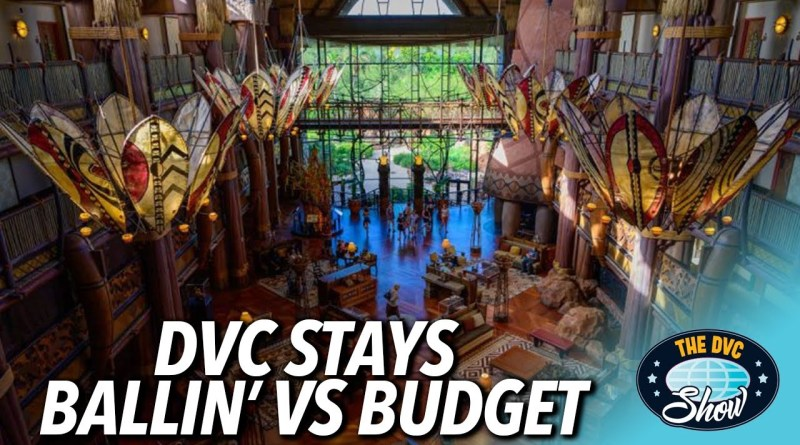 DVC Show Ballin vs Budget