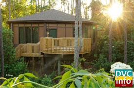 Treehouse villas at Saratoga Springs