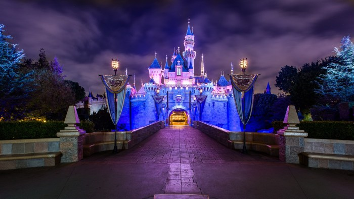 Disneyland Resort Castle
