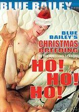 Blue Bailey's Christmas Breeding