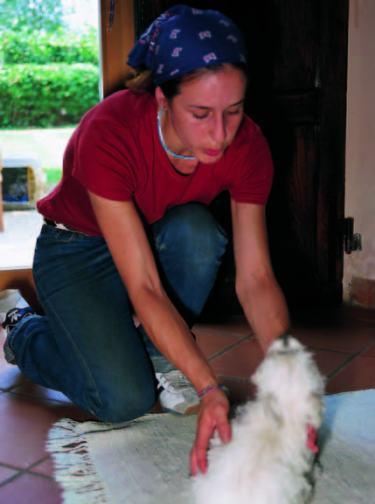 la-enciclopedia-de-la-educacion-del-perro