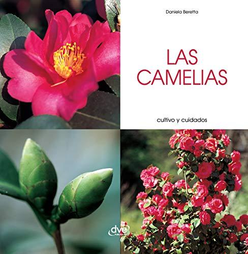 """<a href=""""https://www.amazon.es/Las-camelias-Cultivo-y-cuidados-ebook/dp/B07H5FM5ZQ/ref=sr_1_1?__mk_es_ES=%C3%85M%C3%85%C5%BD%C3%95%C3%91&dchild=1&keywords=9781644615270&qid=1603185442&sr=8-1"""">Las camelias - Cultivo y cuidados</a>"""