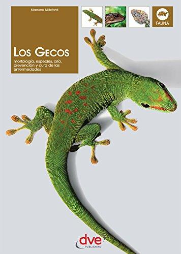 "<a href=""https://www.amazon.es/Los-gecos-Massimo-Millefanti-ebook/dp/B074PRTBQN/ref=sr_1_1?__mk_es_ES=%C3%85M%C3%85%C5%BD%C3%95%C3%91&dchild=1&keywords=9781683254126&qid=1604302535&sr=8-1"">Los gecos</a>"