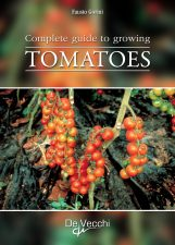 Complete guide to growing tomatoes
