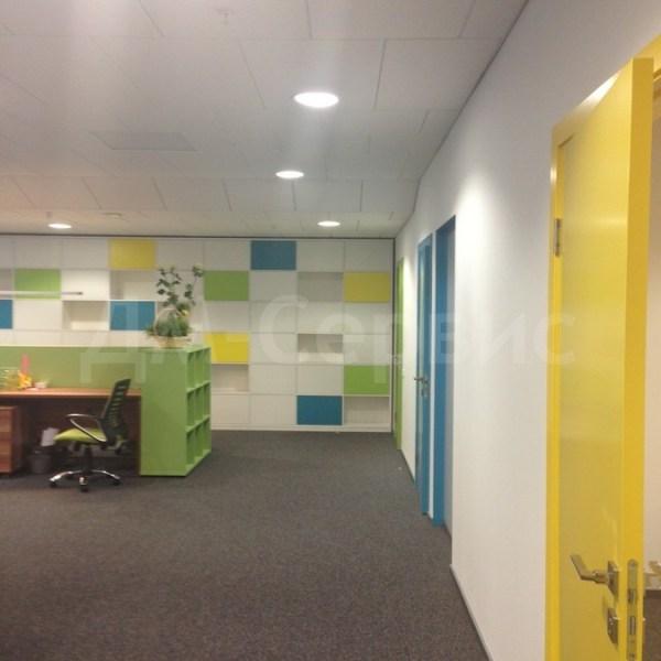 Межкомнатные крашенные двери в офисе