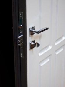 стальная дверь фараон