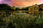 """15 de Mayo, Lago de Las Tortugas de noche, Marbella """"Proyecto Noche 365"""""""