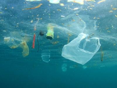 Sustituir los envases de plástico por vidrio para cuidar los océanos
