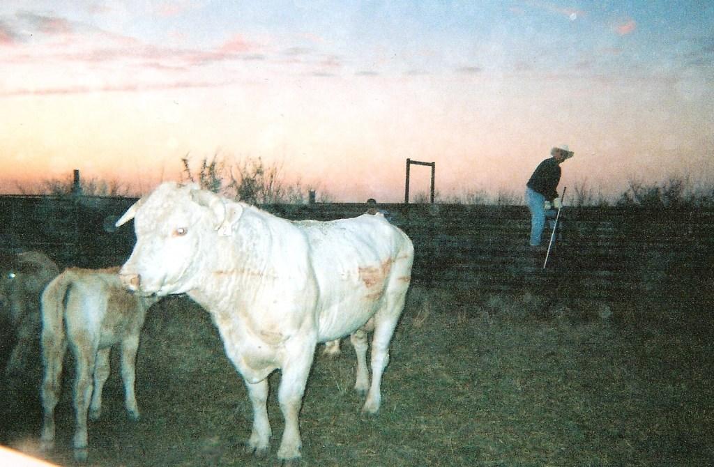 Ranch0011