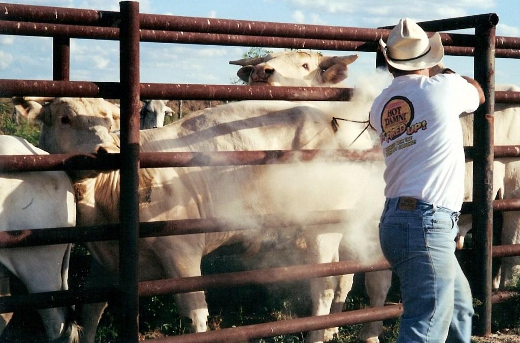 Ranching – 21
