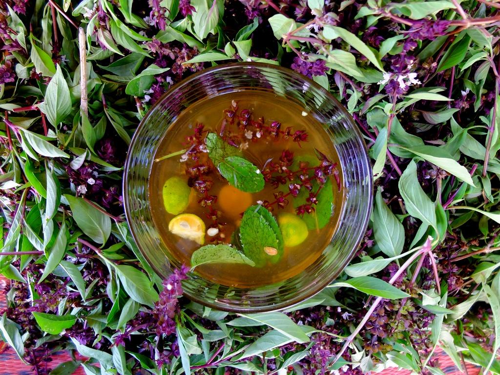 Moje eksperymenty z lemoniadą. W środku: cytryna, limonki, kalamansi, mięta, kwiaty tajskiej bazylii i miód.