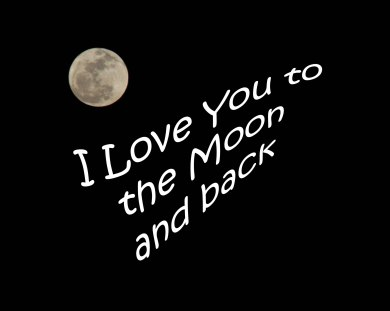 Love you to the moon pic-2