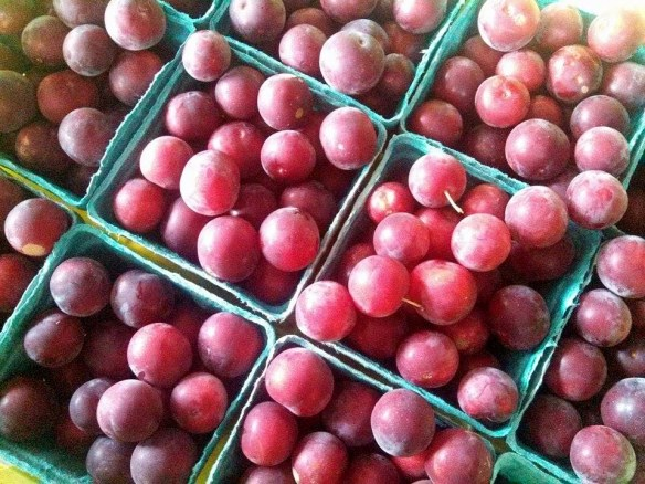 Organic cherry plums, this heirloom variety is a favorite of ours.