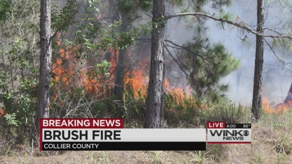 Firefighters control Golden Gate Estates brush fire | WINK ...