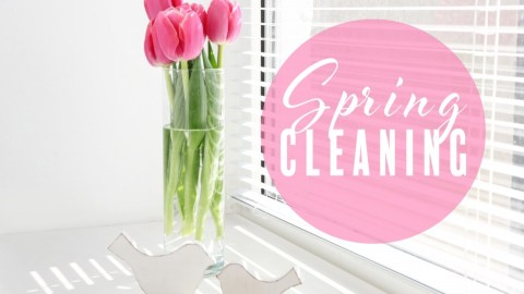 D-termined: Spring Cleaning Tips and Tricks for Entrepreneurs
