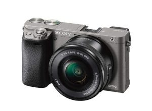 Best Cameras For Beginning Photography
