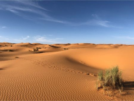 How To Photograph Desert Landscapes