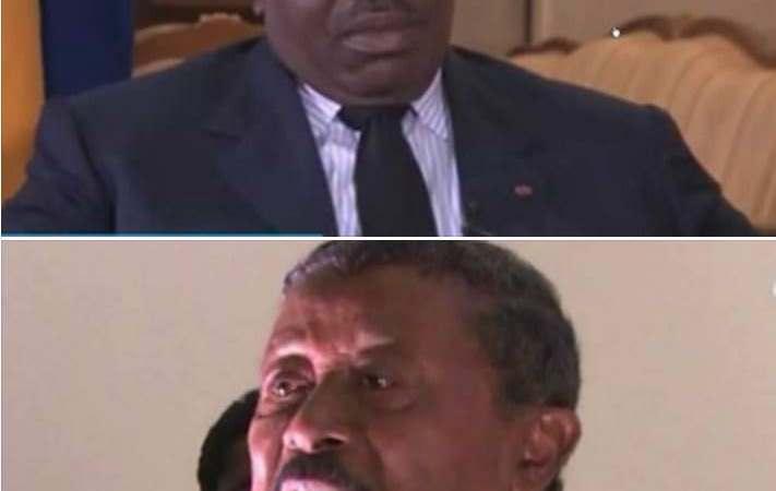 ALI BONGO JEAN PING 01 - Gabon-cour constitutionnelle : Quinze jours pour régler le contentieux électoral Ali Bongo et Jean Ping