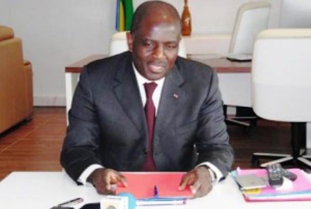 protection de lenvironnement la bad accorde plus de 800 millions de francs cfa au gabon - Gabon : Régis Immongault décortique la situation économique du pays