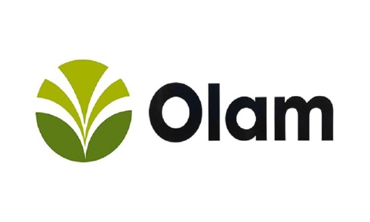 Olam International - Impacts des activités du Groupe Olam sur l'économie de la République gabonaise entre 2010 – 2017