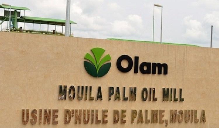 Olam Palm Mouila - Palmiers à huile: Mouila Lot 3 Gabon, troisième plantation d'Olam certifiée RSPO