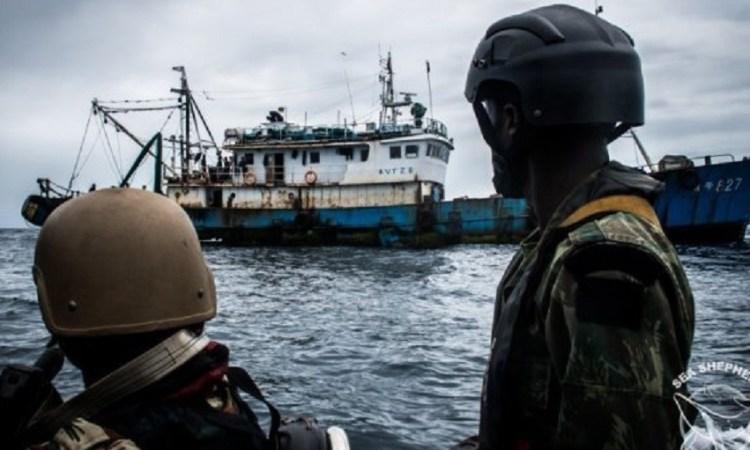 Gabon : L'opération « Albacore » montre ses fruits