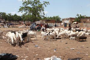 Marché des moutons: Les marchands restent avec des invendus sur les bras