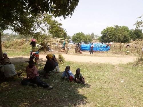 Nord-Kivu : près de 16 000 ménages de déplacés en détresse à Nobili