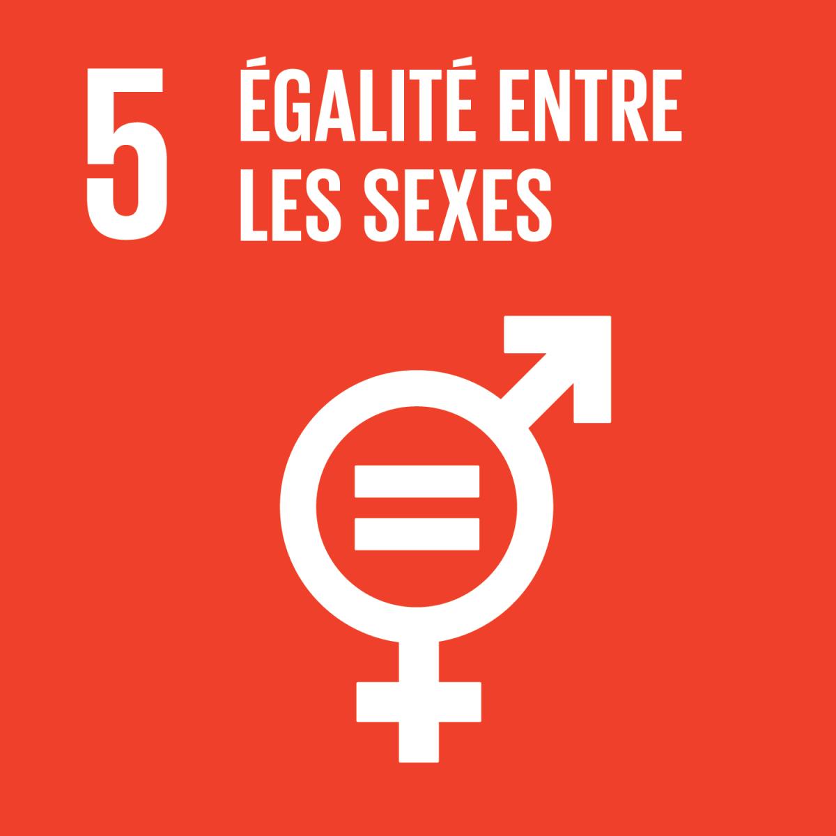 """Gabon/Politique/ODD 5-Genre : """"DIX"""" Femmes membres du 7ème gouvernement du 1er Ministre Julien Nkoghé Békalé"""