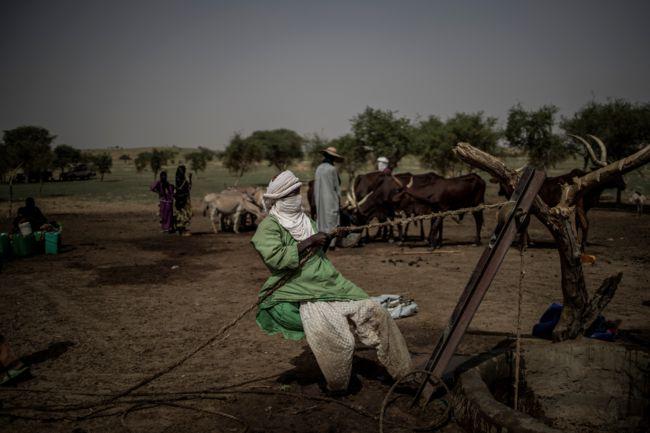 Le Sahel, au coeur des enjeux du changement climatique