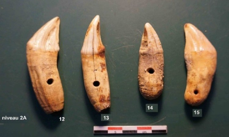 Gabon : Des trésors archéologiques découverts dans la Ngounié