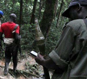 RDC: La présence de groupes armésà Kalehe accroît l'insécurité