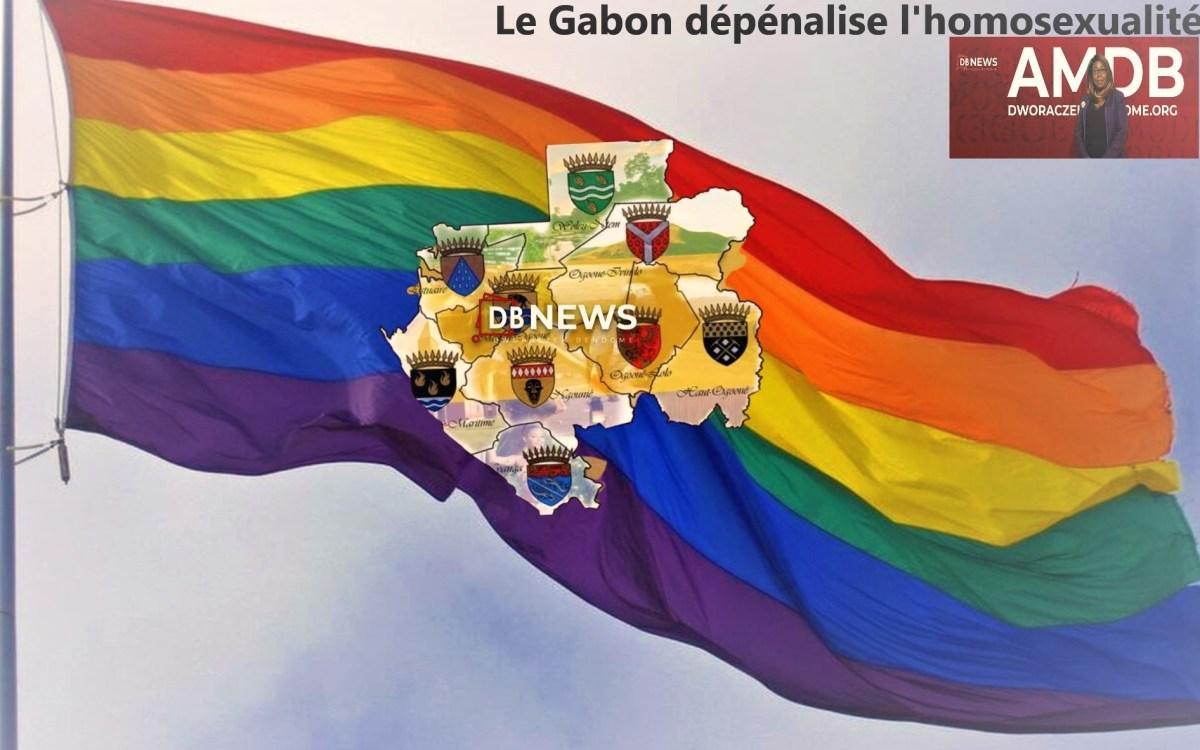"""CHRONIQUE DU GABON   LES DÉPUTES QUI ONT DIT """"NON"""" A LA LOI SUR LA DEPENALISATION DE L'HOMOSEXUALITÉ"""