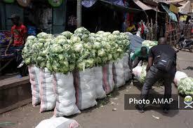 Commerce de chou pomme : Au bonheur de braves vendeuses