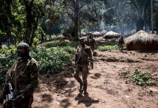 RDC: neuf morts dans des combats dans la province d'Ituri