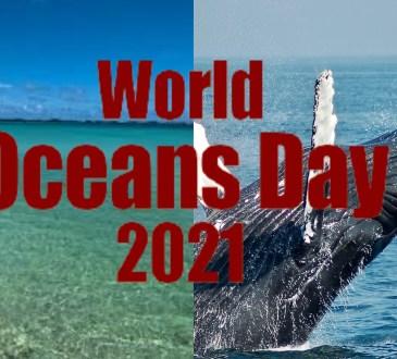 DBNEWS, Journée mondiale des océans 2021