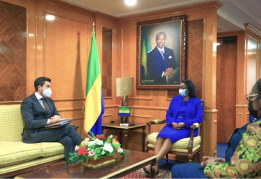 Financement:Le FMI octroie 319 milliards de F au Gabon