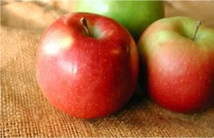 Apples - MS