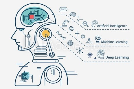 Hire Proficient AI Developers in India