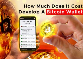 How Much Does It Cost To Develop A Bitcoin Wallet App